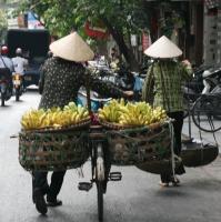 Banana Store- Vietnam